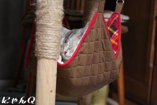 hammock03.jpg