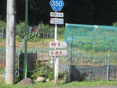 01_nenogon_03.jpg
