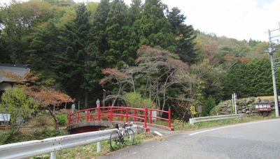 02_akiyama12.jpg