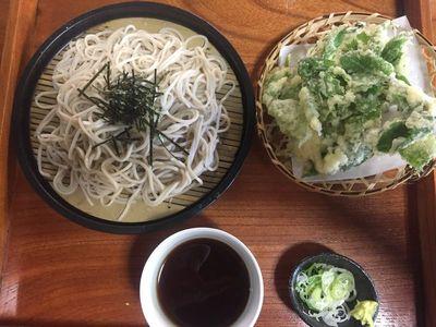 02_hinohara06.jpg