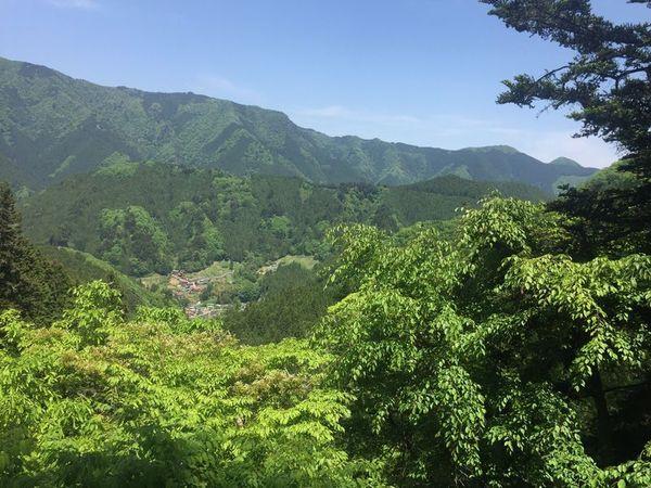 02_hinohara07.jpg