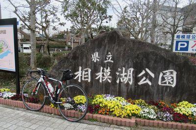 02_sagamiko01.jpg
