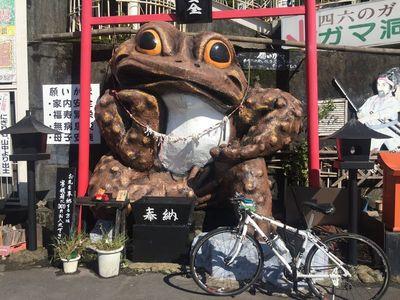 02_tsutsujigaoka01.jpg