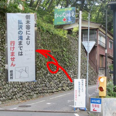 03_hinohara04.jpg