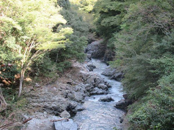 03_hinohara07.jpg
