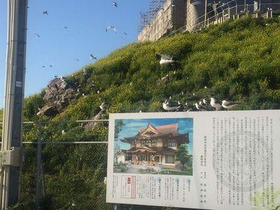 03_kabushima02.jpg
