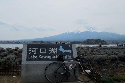 03_kawaguchi02.jpg