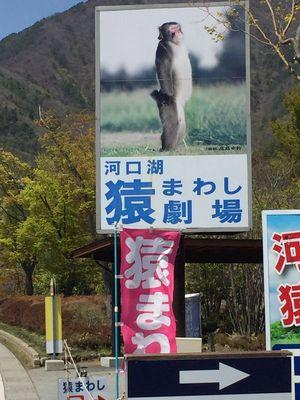 03_kawaguchiko03.jpg