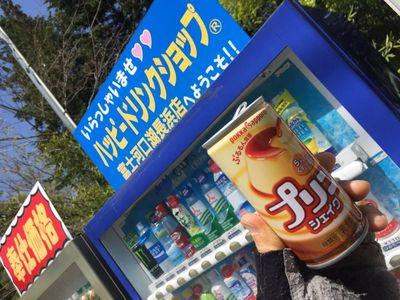03_kawaguchiko08.jpg