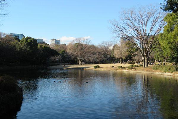 03_kitanomaru02.jpg