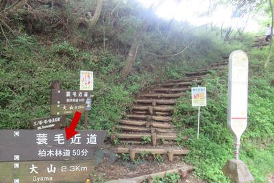 03_ooyama01.jpg