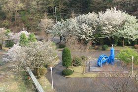 03_siroyama03.jpg