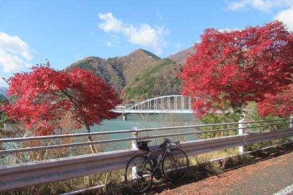 03nakagawa01.jpg