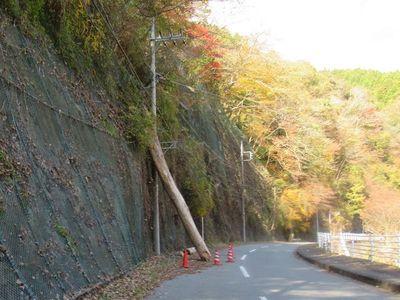 03nakagawa06.jpg