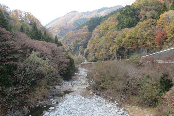 03nakagawa13.jpg