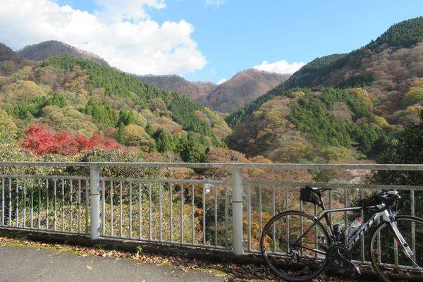 03nakagawa14.jpg