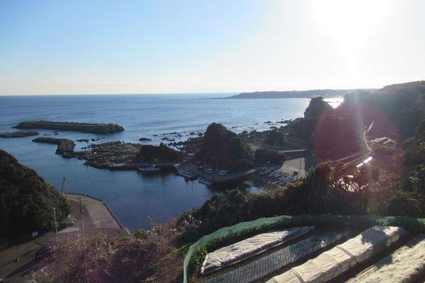 04_miura09.jpg