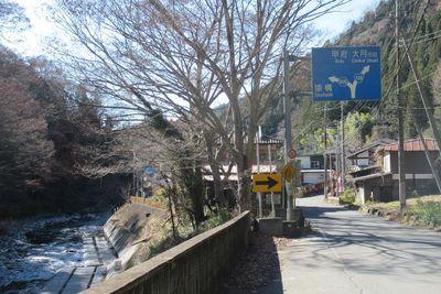 04_saruhasi02.jpg