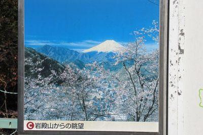 04_saruhasi10.jpg