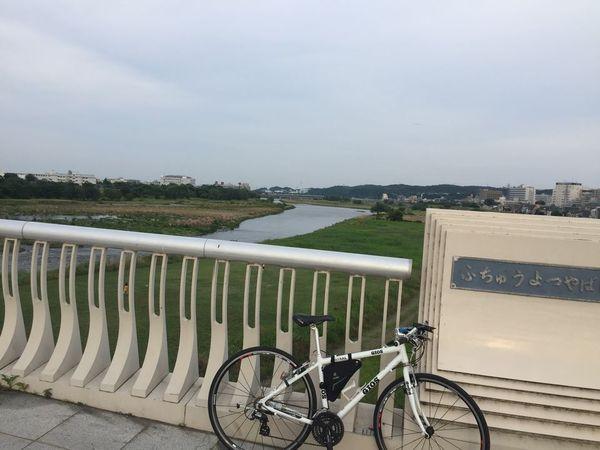 04_tamagawa.jpg