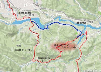 05_fujino08.jpg