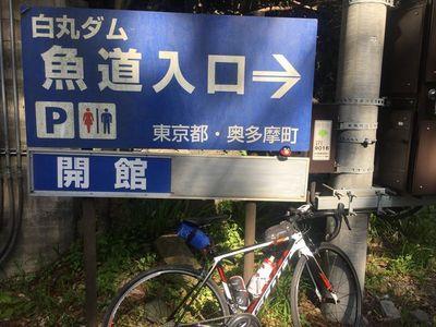 05_okutama04.jpg