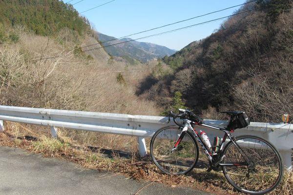 07_fujino01.jpg