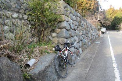 07_fujino05.jpg