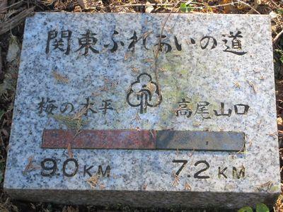 minamitakao02.jpg