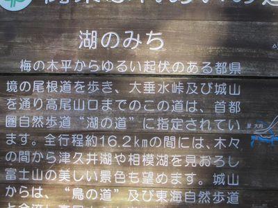 minamitakao08.jpg
