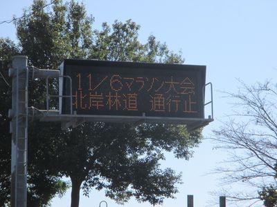 miyagase03.jpg