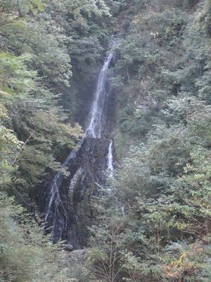 miyagase14.jpg
