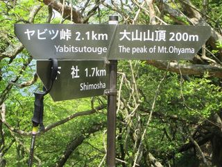 ooyama_35.jpg