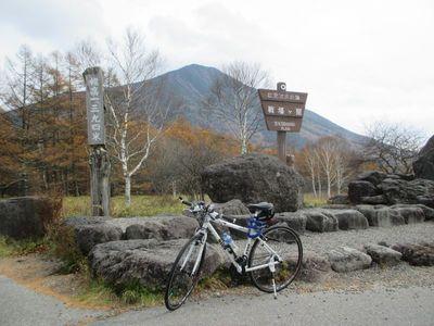 senjougahara02_l.jpg