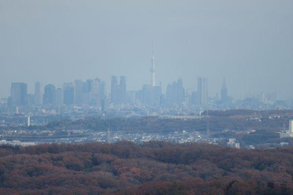 siroyama05.jpg