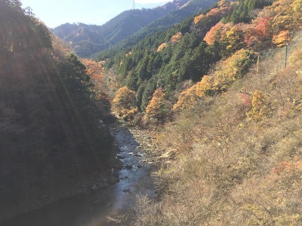 yabitsu01.JPG